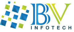 BV InfoTech Pvt. Ltd.